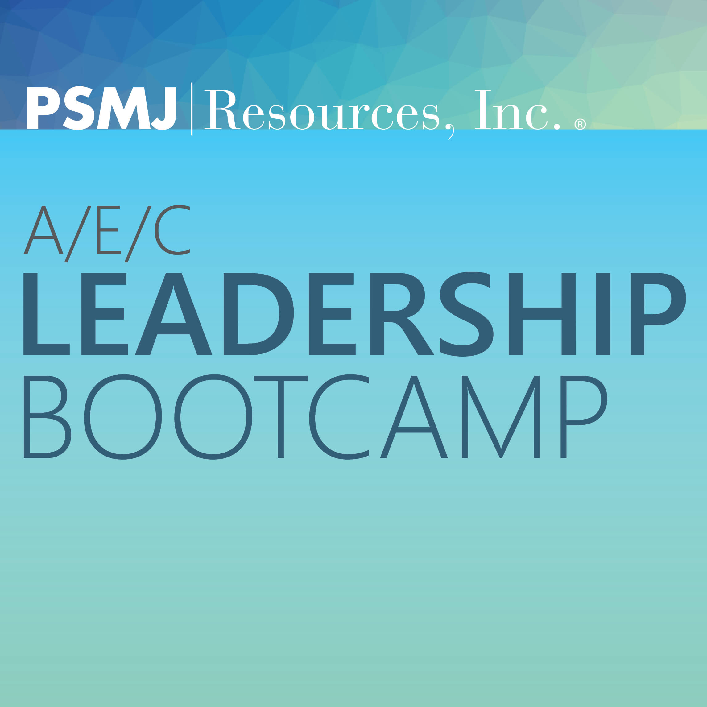 A/E/C Leadership Bootcamp